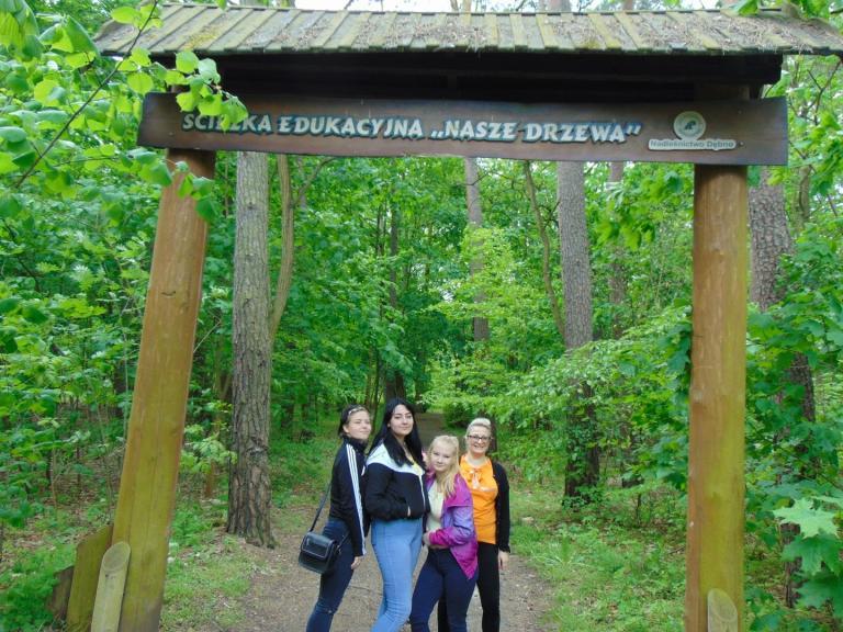 Leśna Ścieżka Edukacyjna