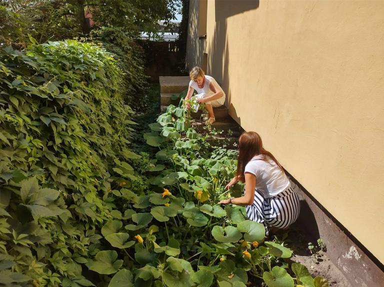 Przygotowywanie OSiW w Niechanowie na nowy rok szkolny