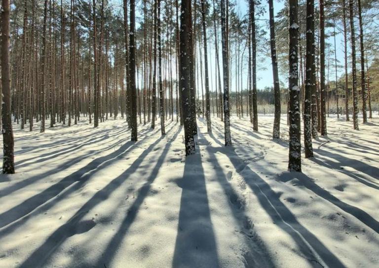 """Zambrów: """"Cztery pory roku - Zima w obiektywie"""""""