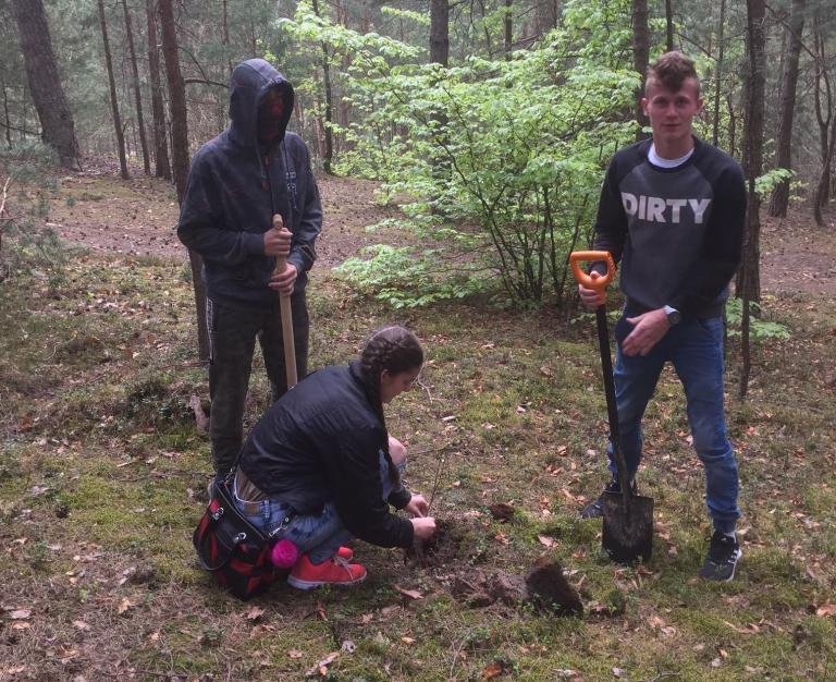 Młodzież z Zamościa sadziła drzewka w Puszczy Solskiej