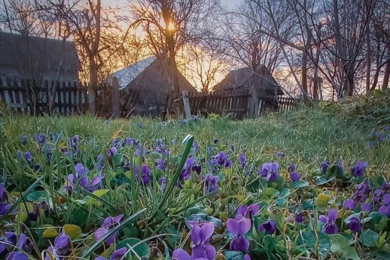 """Łomża: """"W poszukiwaniu wiosny"""" – Konkurs fotograficzny"""