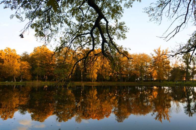 Białystok: Kolory jesieni – Konkurs fotograficzny