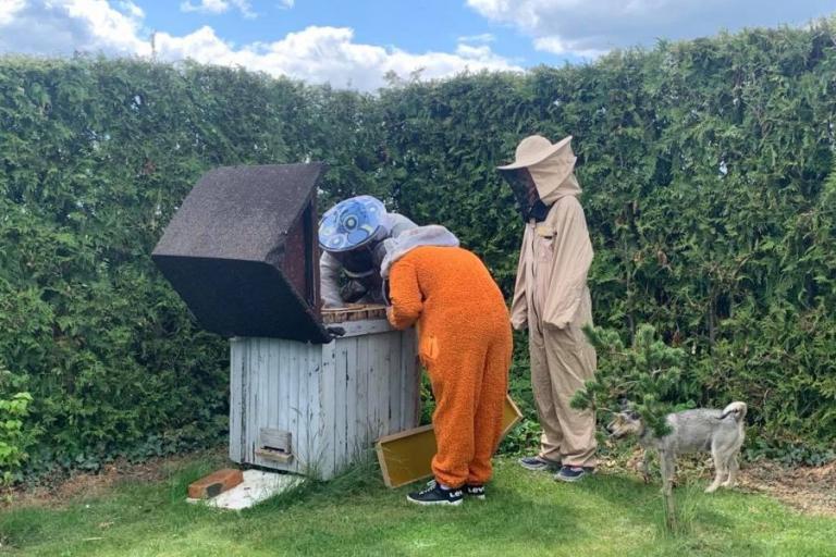 Kolno: Światowy Dzień Pszczół