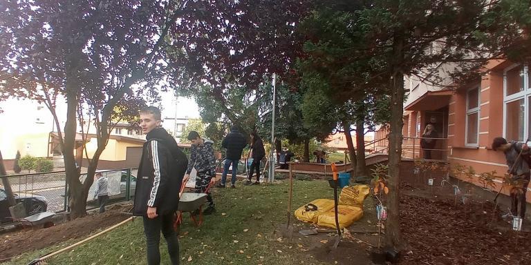 Dzień Drzewa w Ostrzeszowie