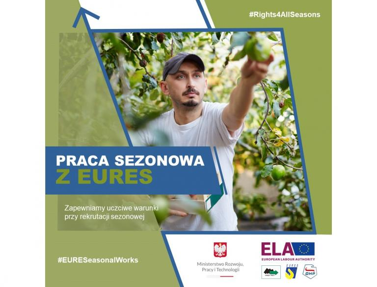 Trwa kampania Europejskiego Urzędu ds. Pracy dotycząca pracy sezonowej