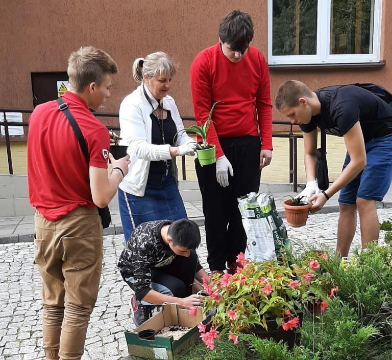 Wasilków: Na początek sadzimy kwiaty